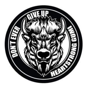 Wrestle Association HEARTSTRONG Gumi